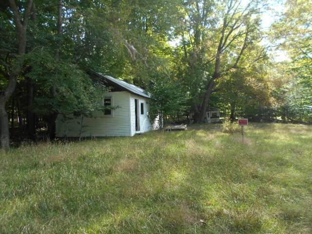 4249 W Nurnberg Road, Ludington, MI 49431 (MLS #21106528) :: Sold by Stevo Team | @Home Realty