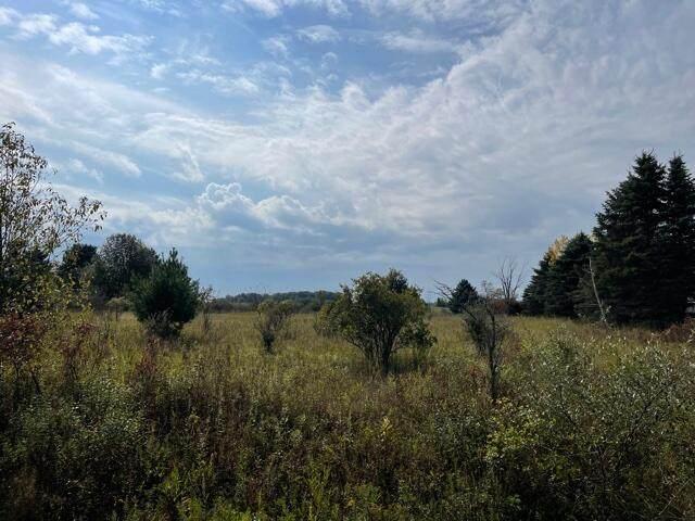 8 Acres V/L 3 Mile Road, Reed City, MI 49677 (MLS #21107229) :: Deb Stevenson Group - Greenridge Realty