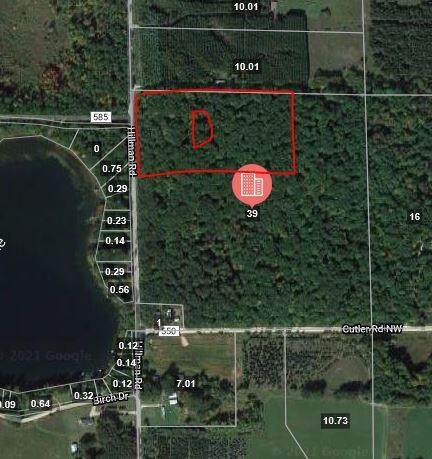 Parcel D Hillman Road, Lakeview, MI 48850 (MLS #21108295) :: Sold by Stevo Team | @Home Realty