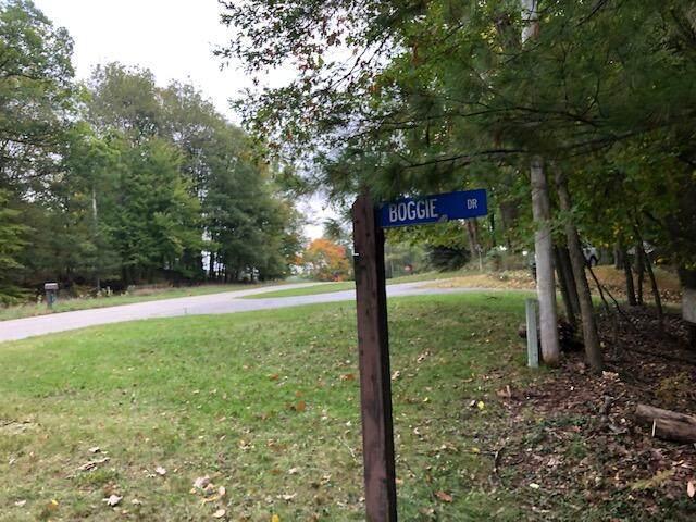 9080 Boggie Drive, Canadian Lakes, MI 49346 (MLS #21109485) :: Sold by Stevo Team | @Home Realty