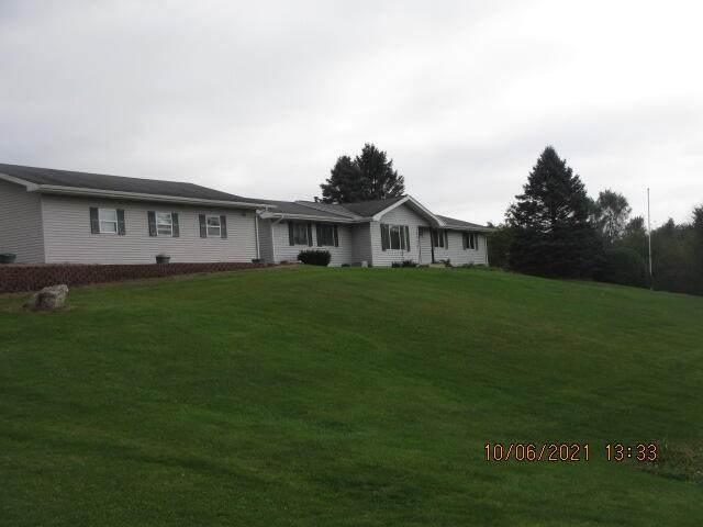 3376 Segwun Avenue SE, Lowell, MI 49331 (MLS #21109564) :: The Hatfield Group