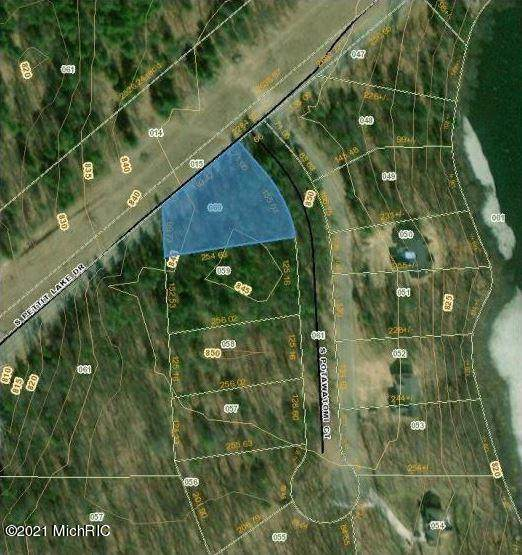 7817 S Potawatomi #60, Newaygo, MI 49337 (MLS #21110368) :: The Hatfield Group