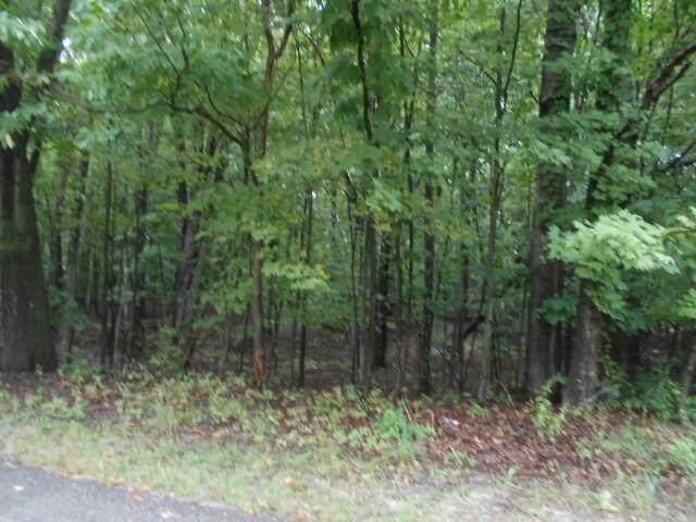 N Claeys Drive #13, Free Soil, MI 49411 (MLS #21111265) :: Sold by Stevo Team | @Home Realty