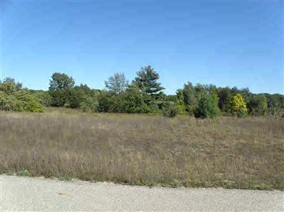 lot10 Trim Lake View Estates - Photo 1