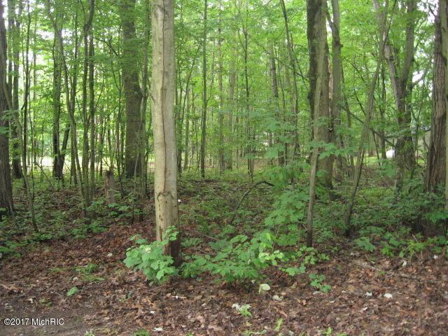W Linden, Ludington, MI 49431 (MLS #16022466) :: Deb Stevenson Group - Greenridge Realty