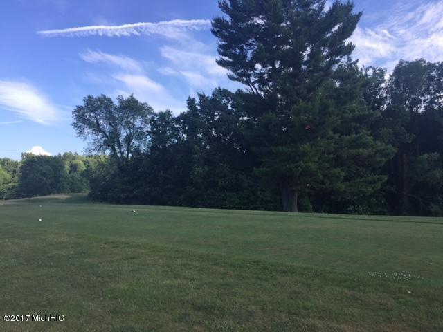 V/L Golf View Drive, Plainwell, MI 49080 (MLS #17028971) :: Matt Mulder Home Selling Team