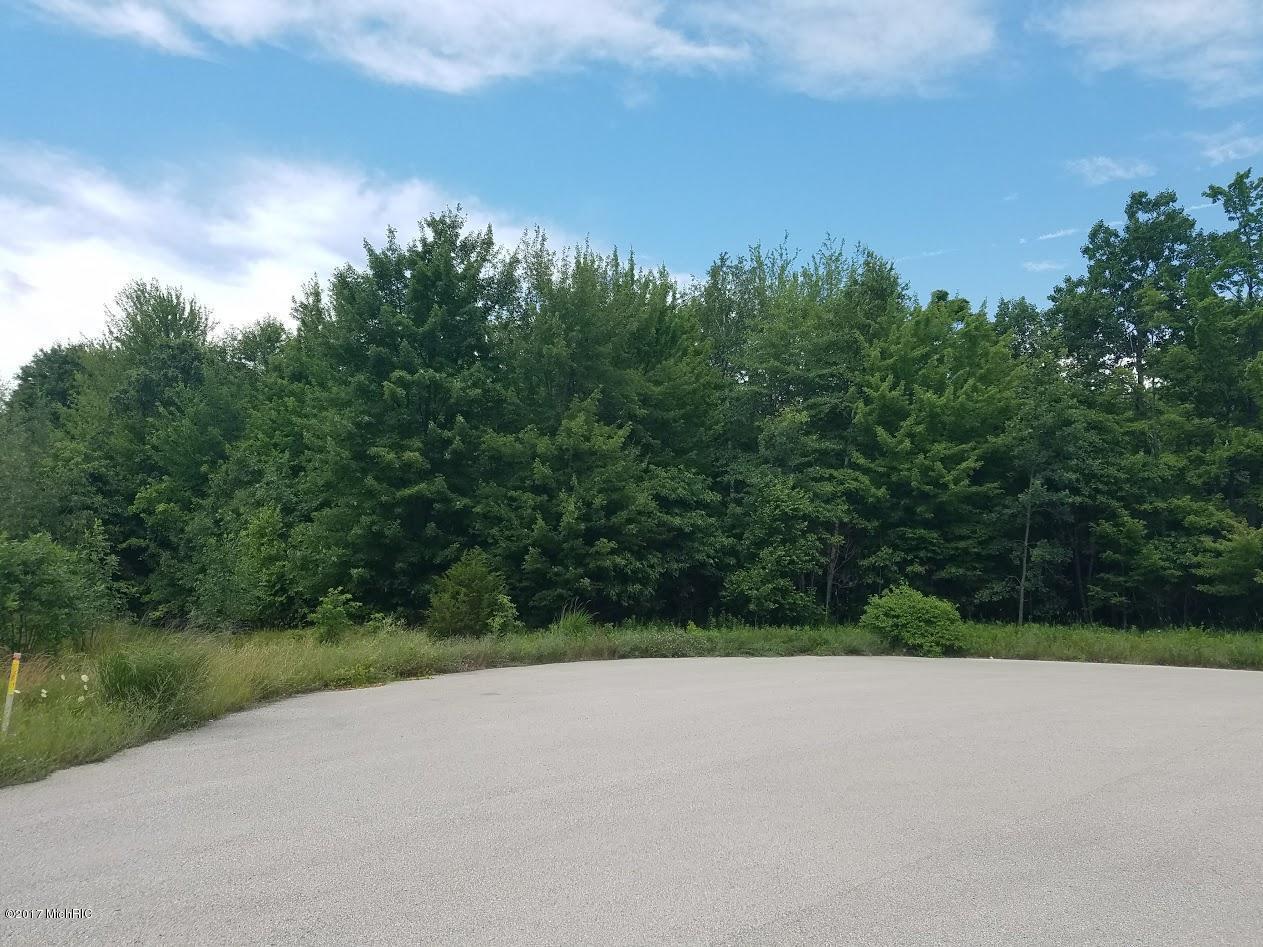 6855 Norton Pines Drive - Photo 1