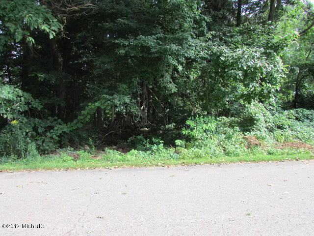 0-Lot 30 Eagle Point Drive, Fennville, MI 49408 (MLS #17044395) :: CENTURY 21 C. Howard