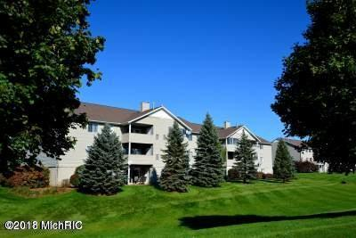 8516 N Jasonville Court SE #108, Caledonia, MI 49316 (MLS #18001832) :: 42 North Realty Group