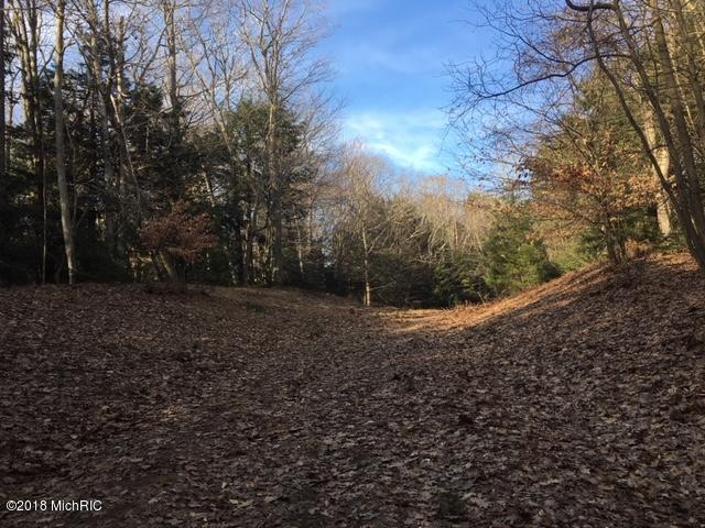 Lot 11 Thomas Lane, Shelby, MI 49455 (MLS #18014988) :: JH Realty Partners