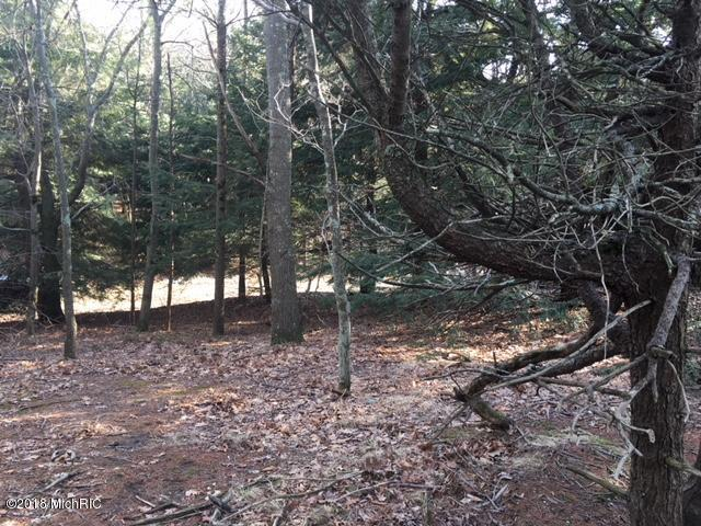 Lot 6 Timber Lane, Shelby, MI 49455 (MLS #18014991) :: JH Realty Partners
