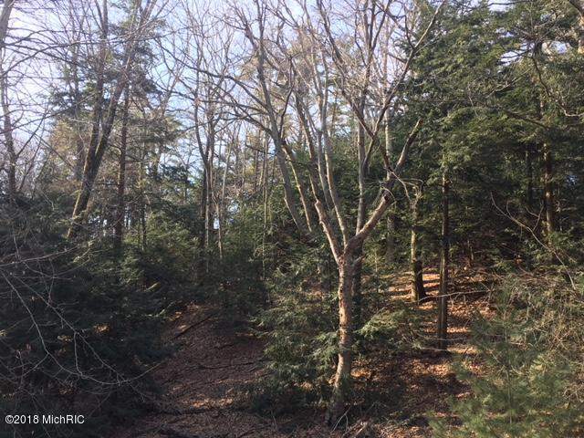 Lot 8 Timber Lane, Shelby, MI 49455 (MLS #18014993) :: JH Realty Partners