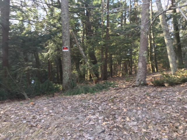 Lot 5 Timber Lane, Shelby, MI 49455 (MLS #18014994) :: JH Realty Partners
