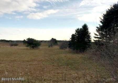V/L E Freeman Road, Free Soil, MI 49411 (MLS #19056364) :: Deb Stevenson Group - Greenridge Realty