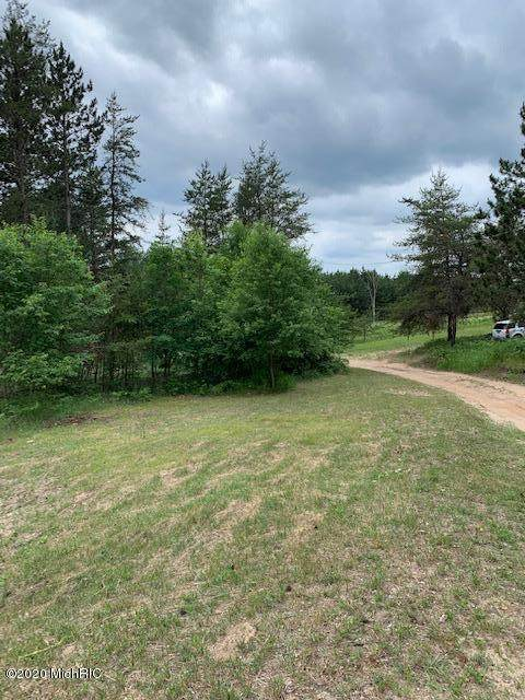 7017 E 3 Mile Road, Luther, MI 49656 (MLS #20024390) :: Jennifer Lane-Alwan