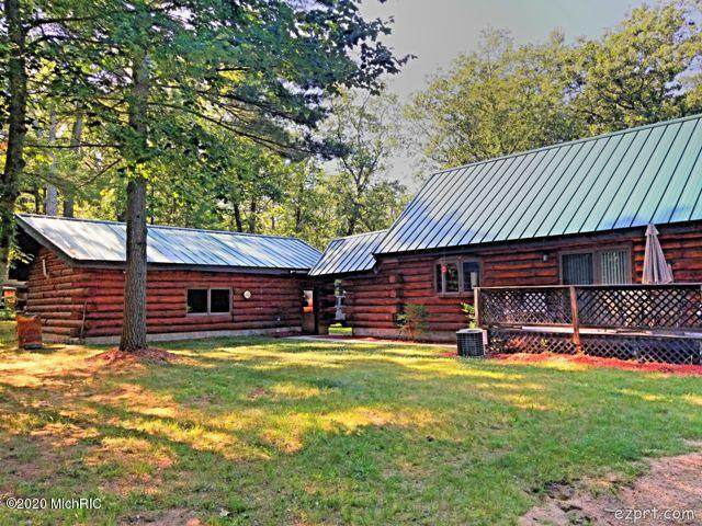 9480 S Lake Cecilia, Baldwin, MI 49304 (MLS #20024599) :: Deb Stevenson Group - Greenridge Realty