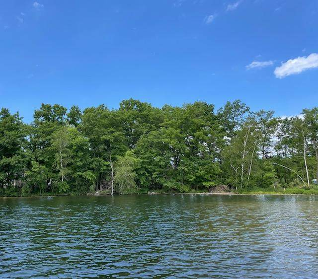 Parcel A East Suwanee Trail, Howard City, MI 49329 (MLS #21021434) :: Deb Stevenson Group - Greenridge Realty