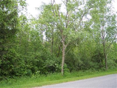 1 Lakeshore Drive, Glenn, MI 49416 (MLS #13030210) :: Deb Stevenson Group - Greenridge Realty