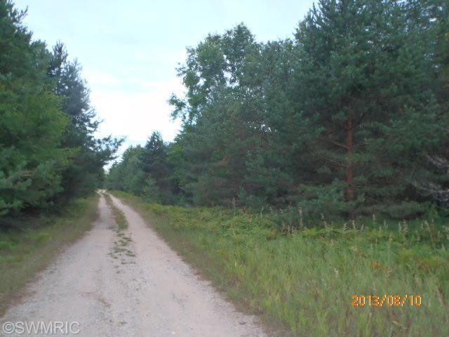 Nine Mile Road, Kaleva, MI 49645 (MLS #13047774) :: Deb Stevenson Group - Greenridge Realty