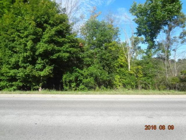 Par A Mason Drive, Newaygo, MI 49337 (MLS #16041456) :: Sold by Stevo Team   @Home Realty