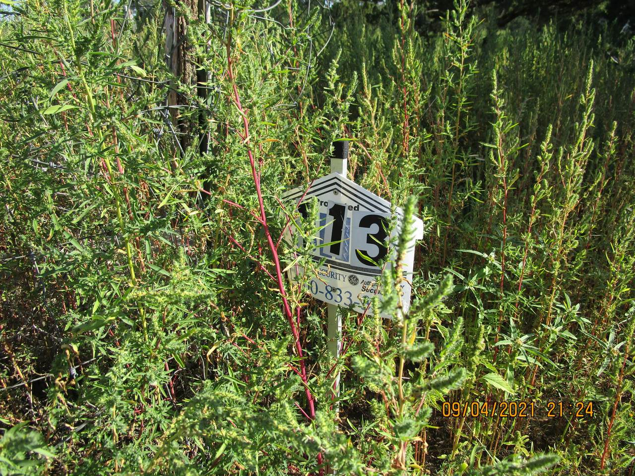 113 4TH OF JULY RD - Photo 1