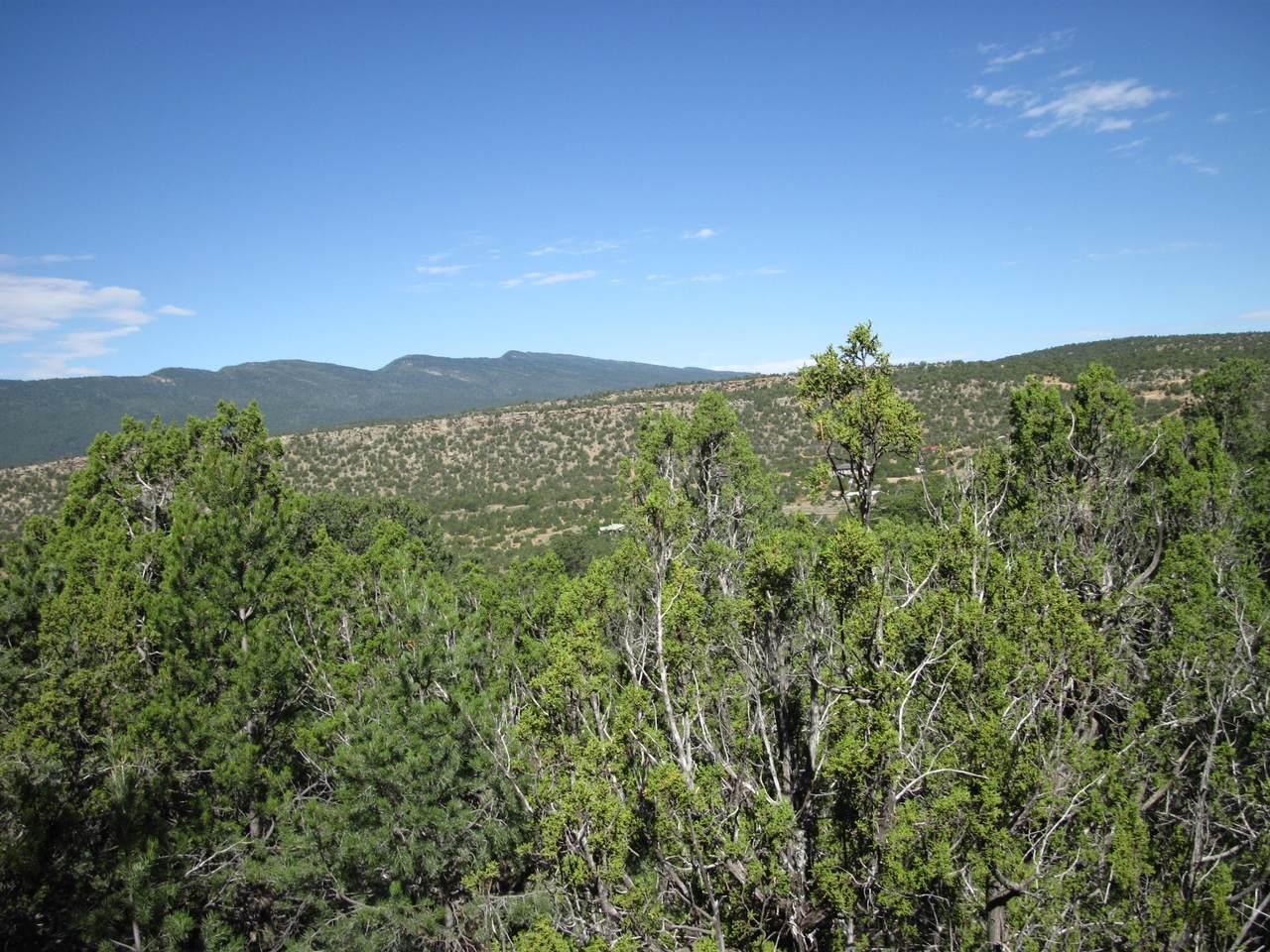 30 Rattlesnake Ridge - Photo 1