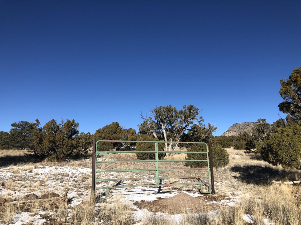 171 Sugarloaf Trail - Photo 1