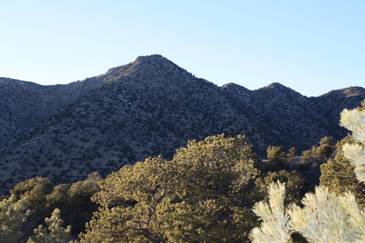 0 Cactus Trail - Photo 1