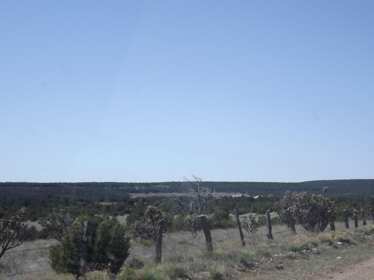 66 B Gallegos Road - Photo 1