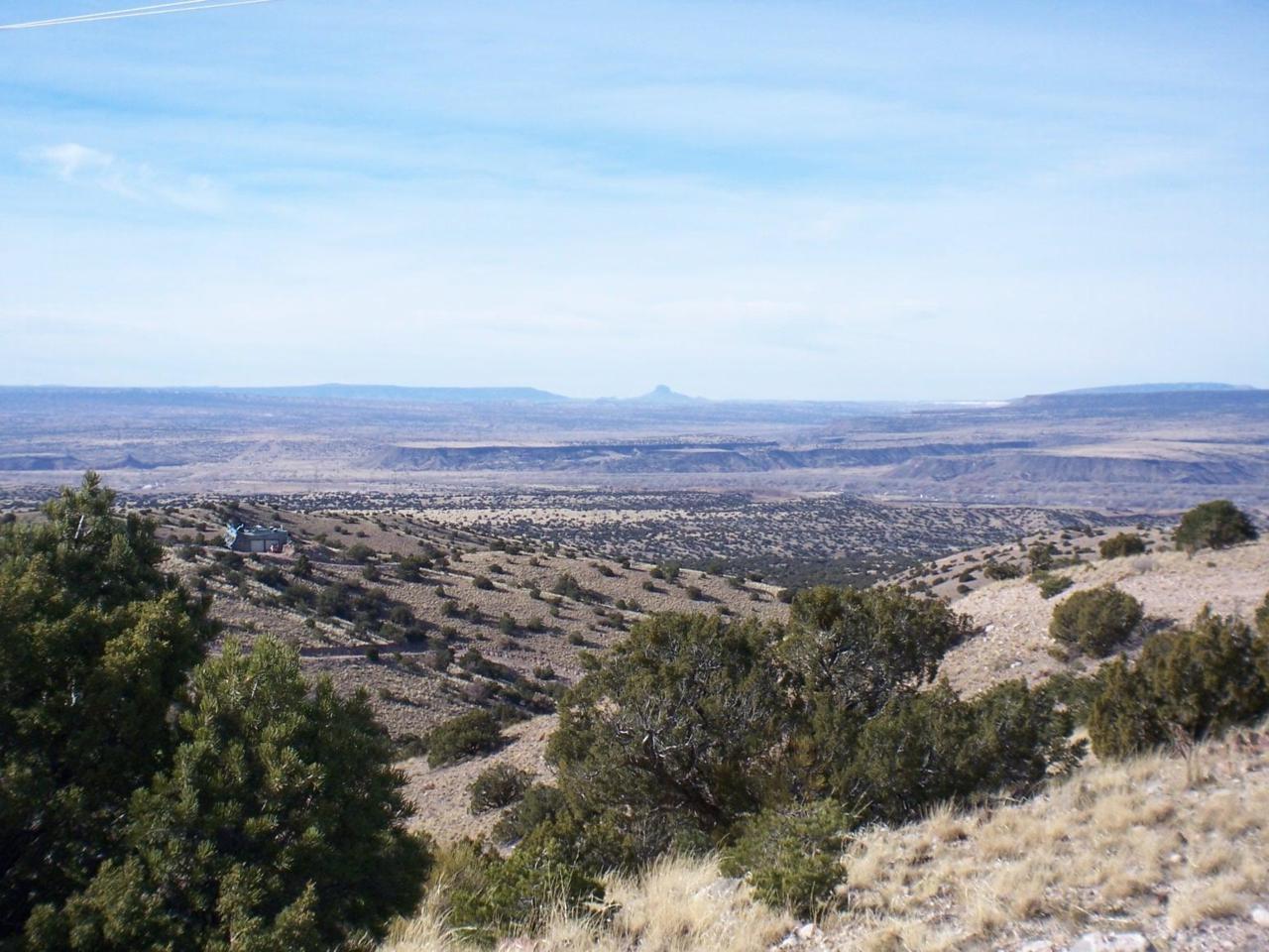 Camino Halcon - 5 Acres - Photo 1
