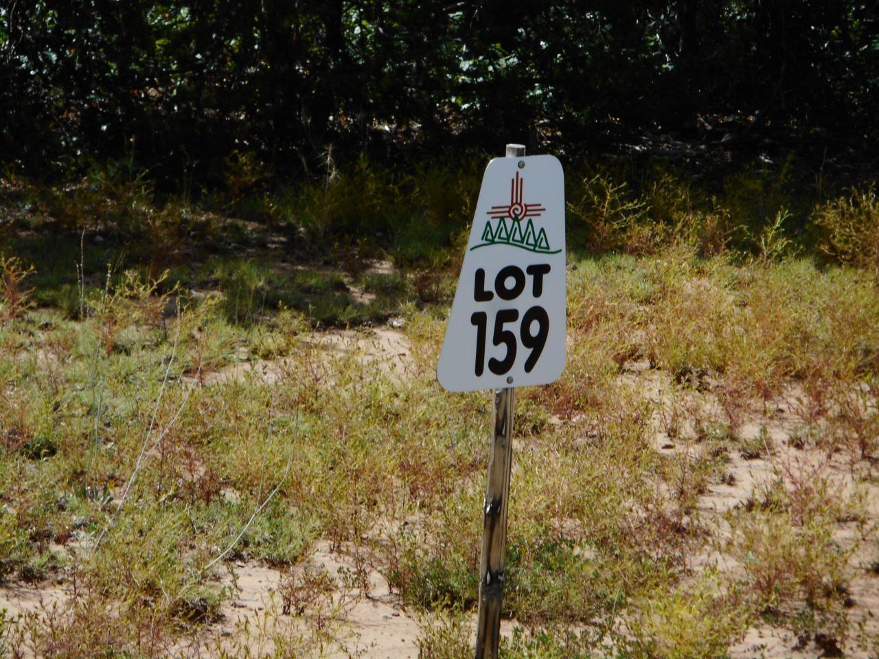 65 Los Pecos Loop - Photo 1
