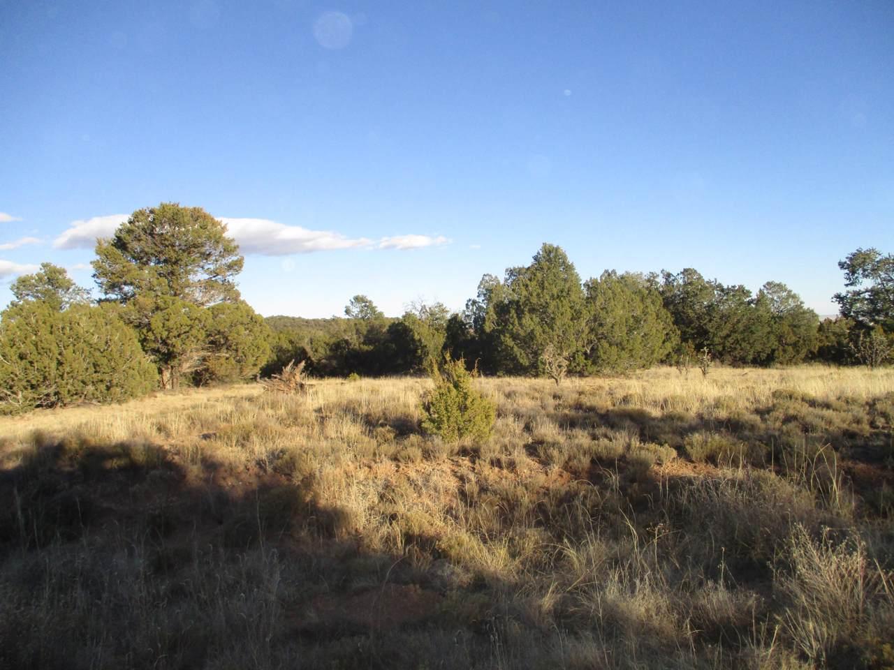 Lot 24 Blk 1 Woodland Hills - Photo 1