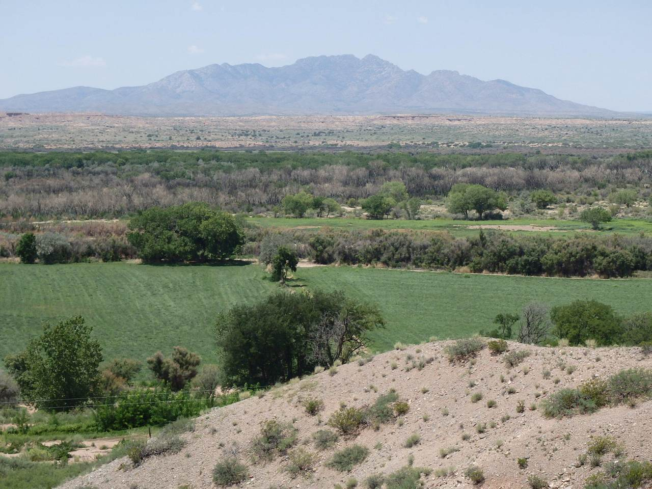 La Joya Farm - Photo 1
