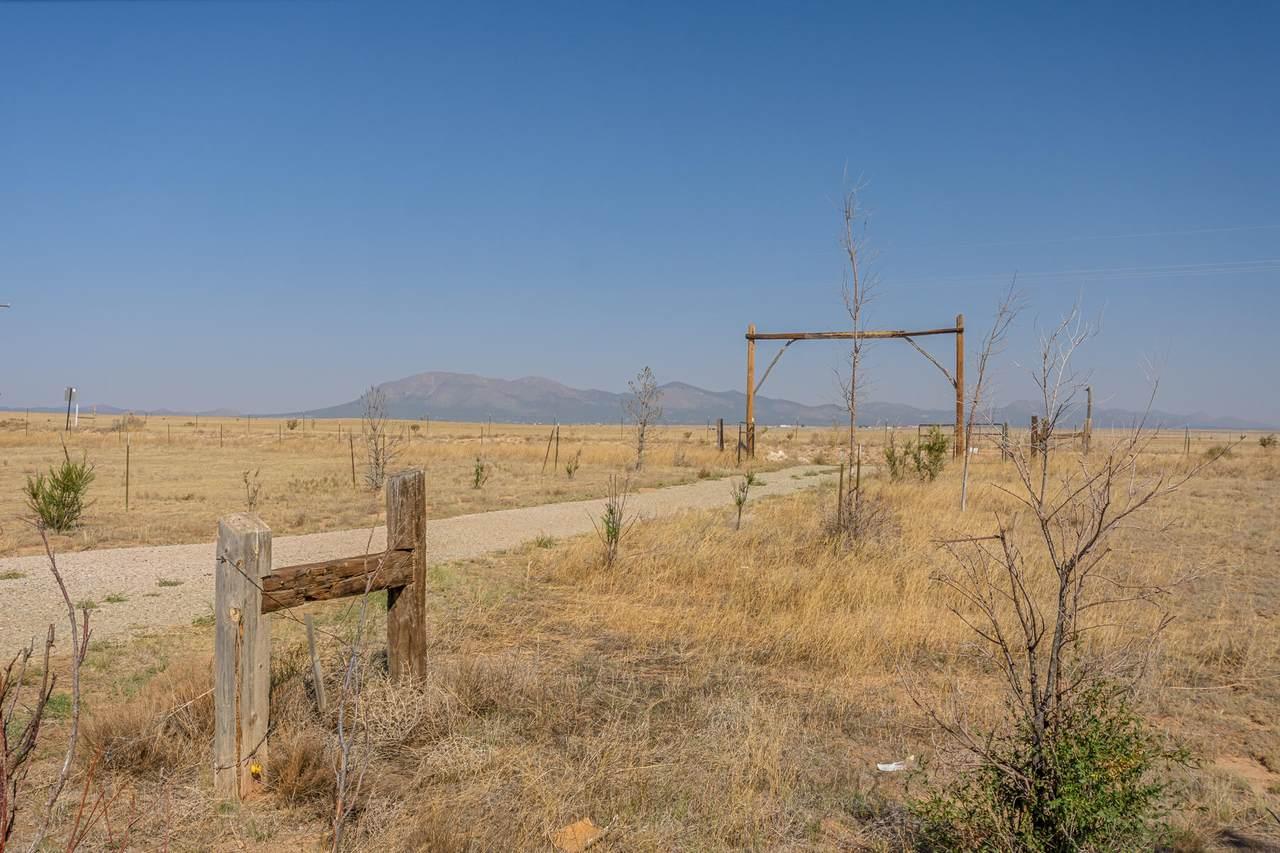 654 Dinkle Road - Photo 1