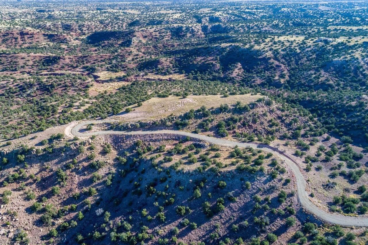71 Creekside Trail - Photo 1