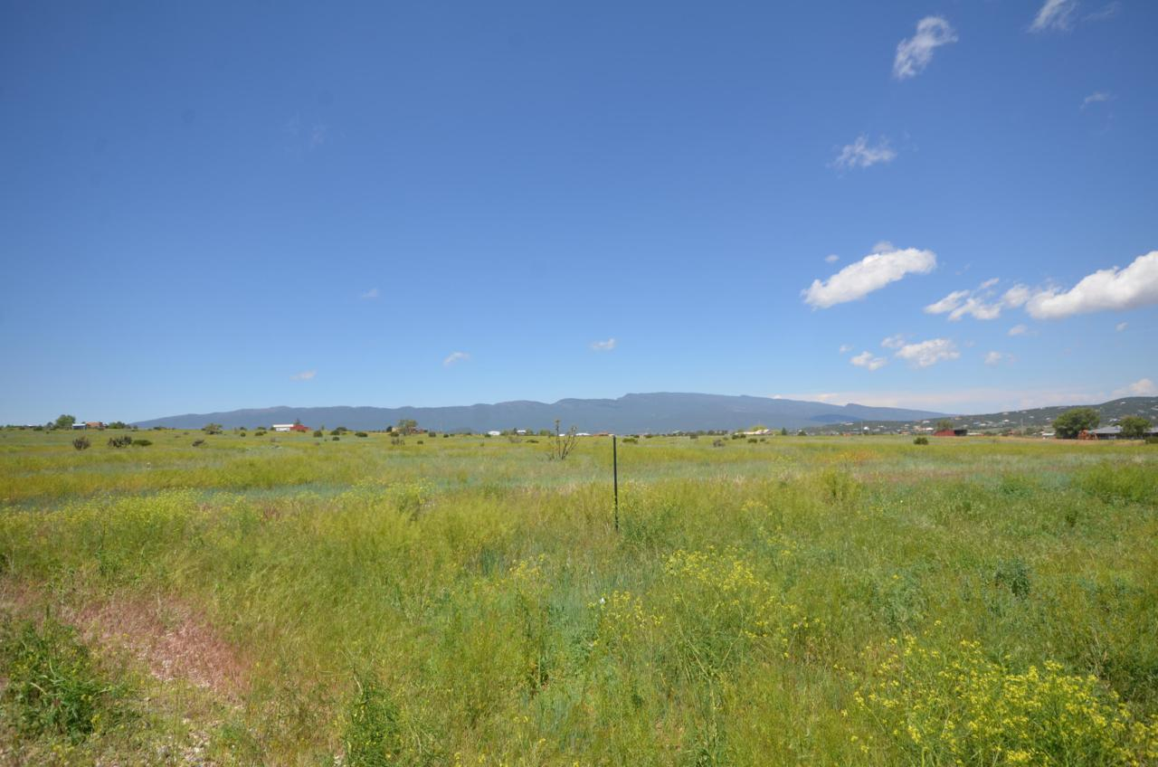 1153 Mountain Valley Road - Photo 1