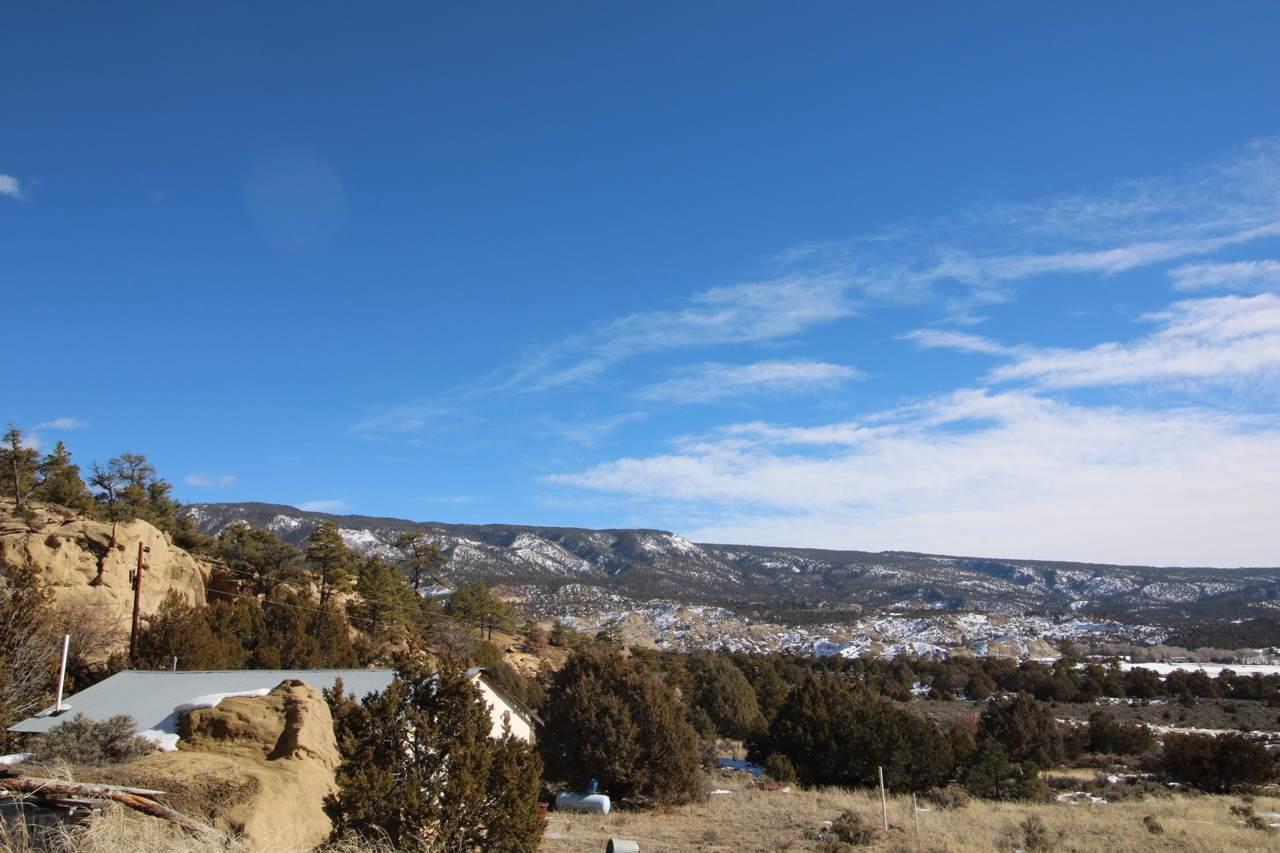 Los Pinos County Road - Photo 1