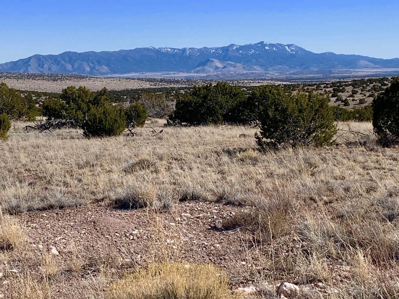 174 Pinon Springs Ranch - Photo 1