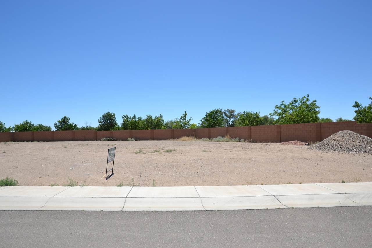 10441 Amara Vista Court - Photo 1