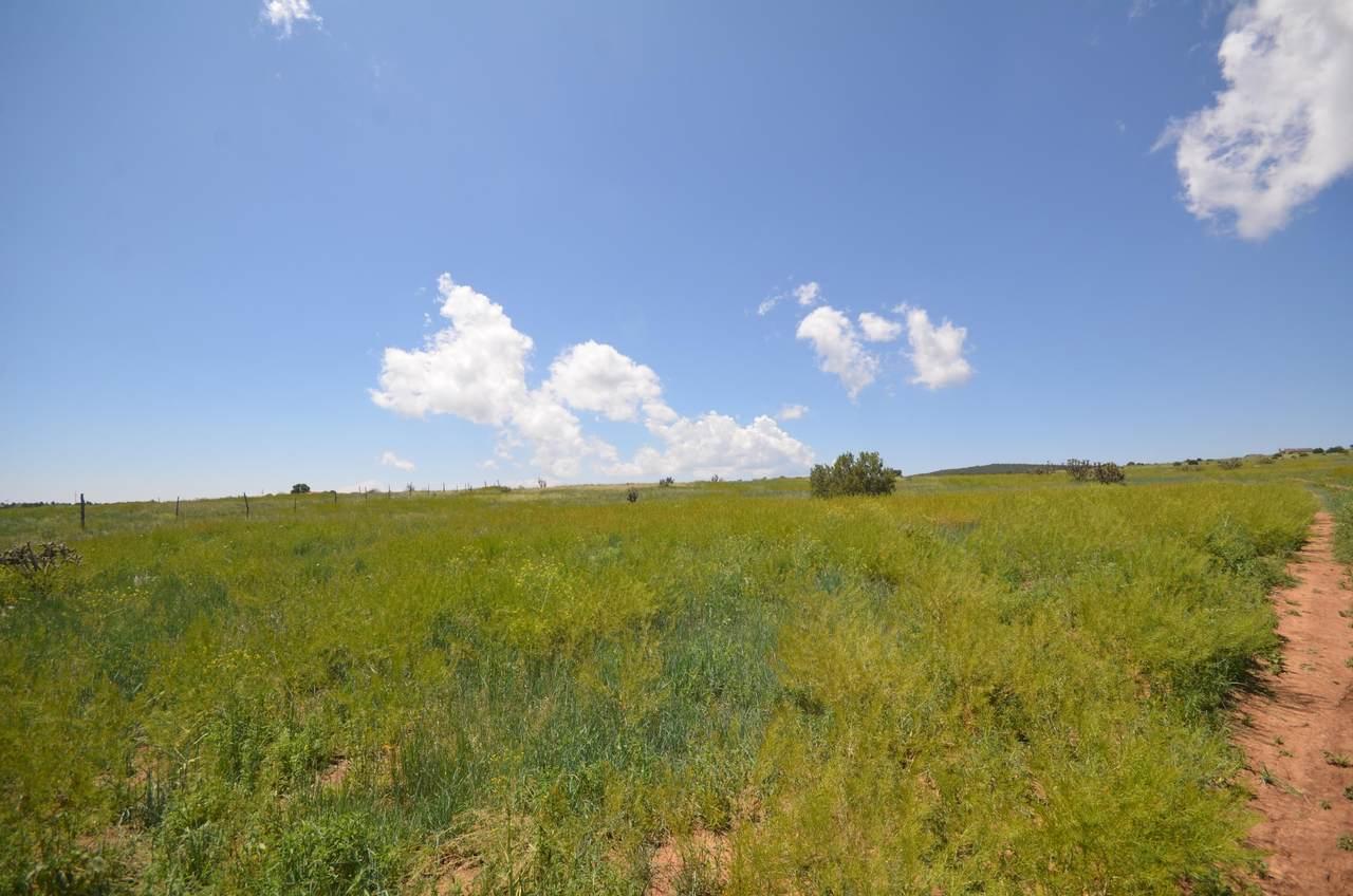 5 Camino Del Prado Loop - Photo 1