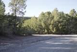 42 Puntilla Drive - Photo 2