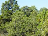 30 Rancho Verde Road - Photo 7