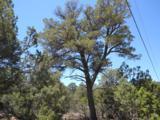 22 Vista Alta Drive - Photo 1