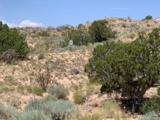 2311 Desert Zinnia Road - Photo 1