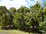 33 Los Pecos Loop - Photo 3