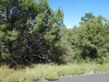 33 Los Pecos Loop - Photo 4