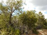 57 Los Pecos Loop - Photo 4