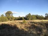 Lot 31 Blk 1 Woodland Hills - Photo 1