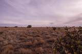 0 Trail Trail - Photo 12