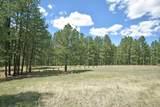 Elk Trail - Photo 10